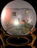 globe-scene-fish-bowl.png