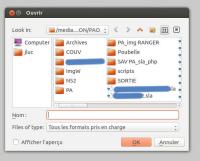 file open dialog.jpg