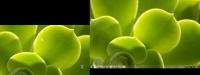 layout].jpg