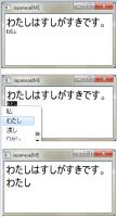 qtbug_japanese.PNG