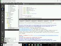mapviewer_32bit_MinGW-error-Windows_10_64bit.png