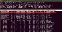 ubuntu usage.png